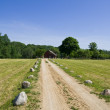 Road to farm - Stock Photo