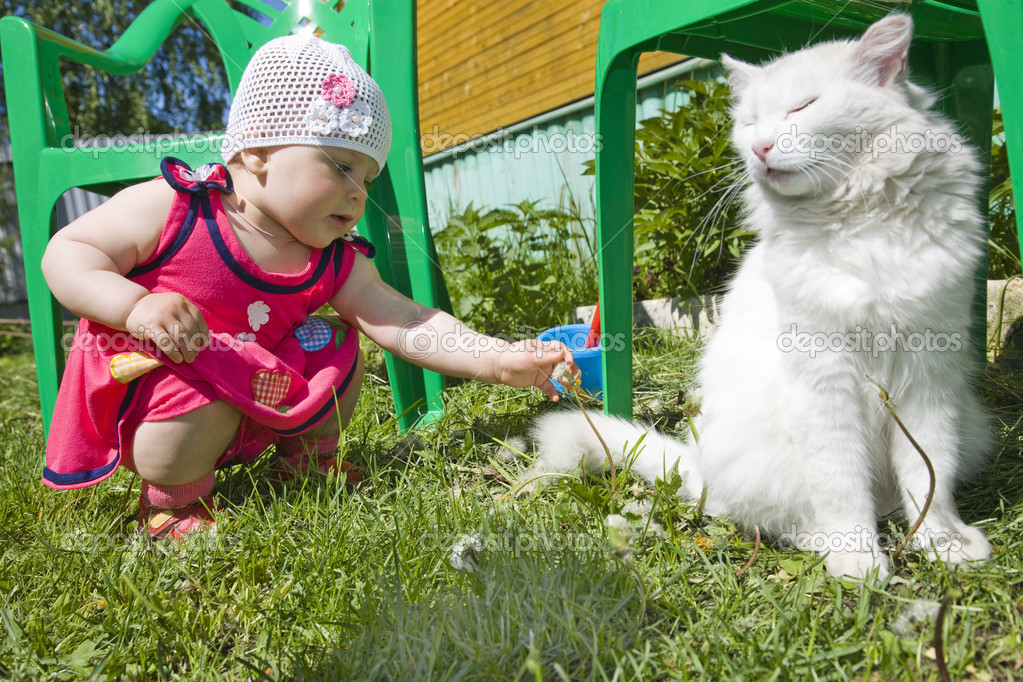 The tender white cat for which hunts the tiny girl   — Stock Photo #2378248