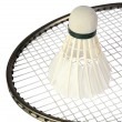One shuttlecocks on a racket — Stock Photo