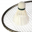 One shuttlecocks on a racket - Stock Photo