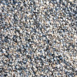 Royalty-Free Stock Photo: Texture of cockleshell, grey texture