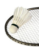 Shuttlecocks on a racket — Stock Photo