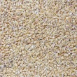Stock Photo: Texture, background of millet