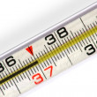 Stock Photo: Mercurial thermometer (37)