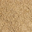 Texture, background of millet — Stock Photo