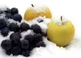 Apples on snow — Stock Photo