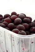Quick-frozen cherrys — Stock Photo