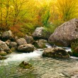 Autumn river — Foto de Stock