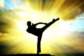 Kung fu at the edge — Stock Photo