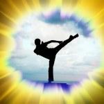 Kung fu illustration — Stock Photo #2258675