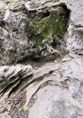 关于河砾岩内里斯 1 — 图库照片