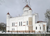 The Cathedral of Theotokos in Vilniu — Stock Photo