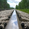 Old steel railroad tracks - Stock Photo