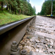 Railroad Tracks — Foto de stock #1101523