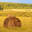 Royalty-Free Stock Photo: Straw bales on farmland
