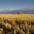 Stock Photo: End of day over field with hay bale