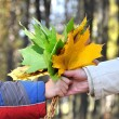 Royalty-Free Stock Photo: The hand holding a bouquet from autumn m