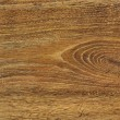 Wood teak texture — Stock Photo #1108763