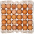 Eggs in protective packaging — Stock Photo