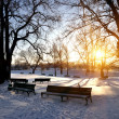 Lonely benches covered in deep snow — Stock Photo