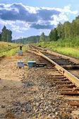 Railway leavings far ways — Stock Photo