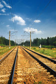Steel Railroad Tracks — Stock Photo
