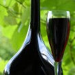 Red wine and red currant — Stock Photo #1125462