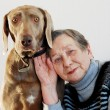 Senior woman and dog — Stock Photo #2208603