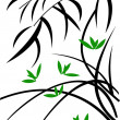 Branch of bamboo - Stock Vector