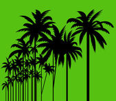 Palm trees — Stockvector
