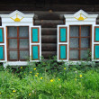 Two windows - Stock Photo