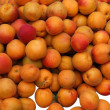 Royalty-Free Stock Photo: Apricots