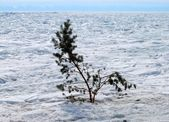 Frozen Baikal Lake — Stock Photo