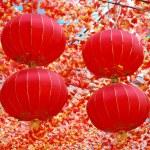 Chinese lanterns — Stock Photo #1167125