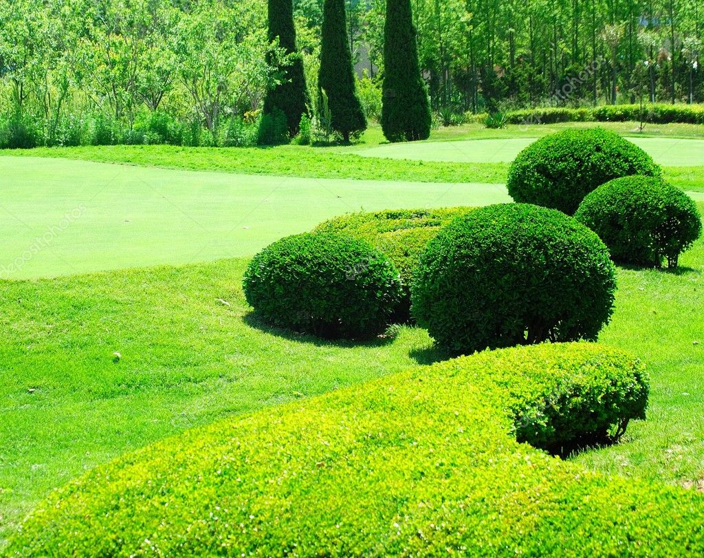 Garden. Part of the golf field. — Stock Photo #1181690