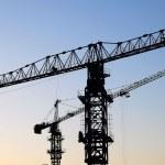 Two cranes — Stock Photo #1310492