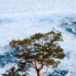 frozen lake baikal — Stock Photo #1954611