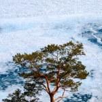 Frozen jezioro Bajkał — Zdjęcie stockowe