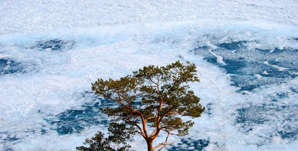 Frozen Lake Baikal in winter. Day. Nobody.  — Stock Photo #1954611