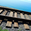Railroad track — Stock Photo #2046112