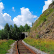 Circum-Baikal railroad — Stock Photo