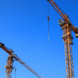 Royalty-Free Stock Photo: Two crane