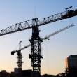 Two cranes — Stock Photo #2248073