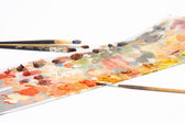 Different brushes and color palette isol — Stock Photo