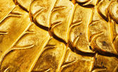 Gold patterns — Stock Photo