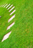 Road on the grass — Stock Photo