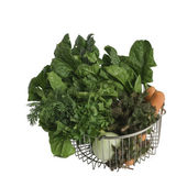 Raw vegetable in steel basket — Stock Photo