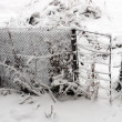 Stock Photo: Gate and fence in snow