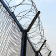 Fence with barbed wire — Stock Photo #1114395