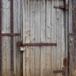 Closed wooden door of old shed — Stock Photo #1115166